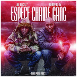 espece_chaine_gang